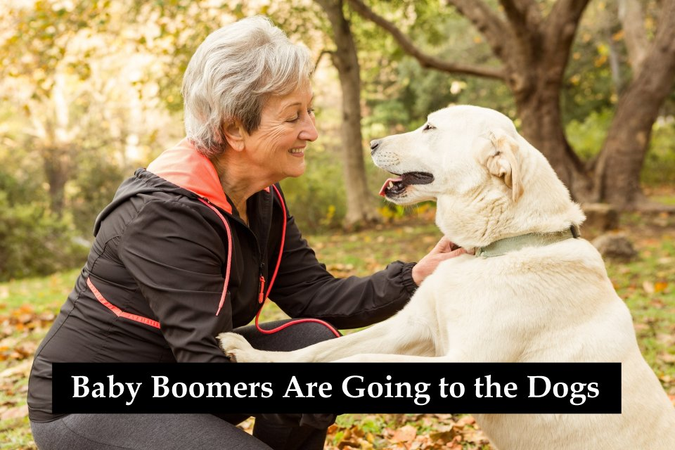 Baby boomers are going to the dogs benefits of having a pet to love