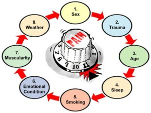 8 causes of pain sex trauma age sleep smoking emotional condition muscularity weather