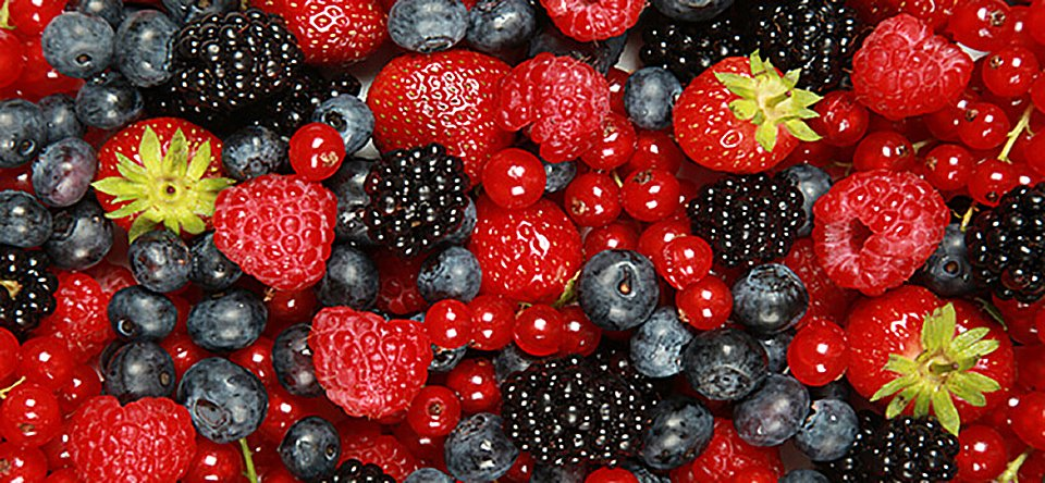 6 reasons you should eat berries every day